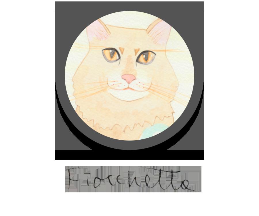 Fiocchetta
